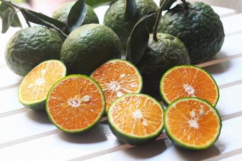 Cách dùng Ủ Trắng Cafe với cam hoặc chanh