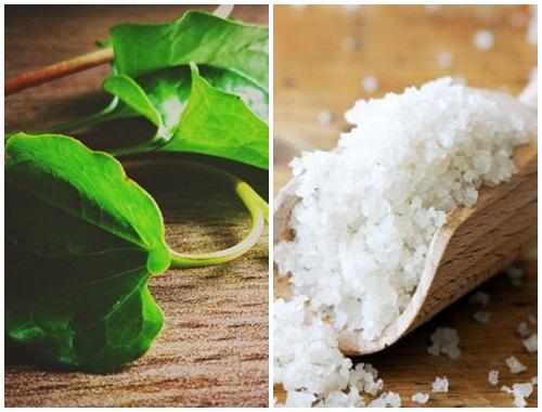 Cách trị mụn bằng rau diếp cá và muối hột