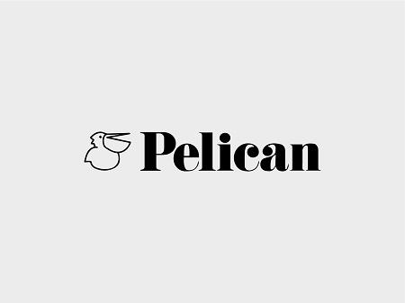 Thương Hiệu Pelican Nỗi Tiếng Của Nhật Bản